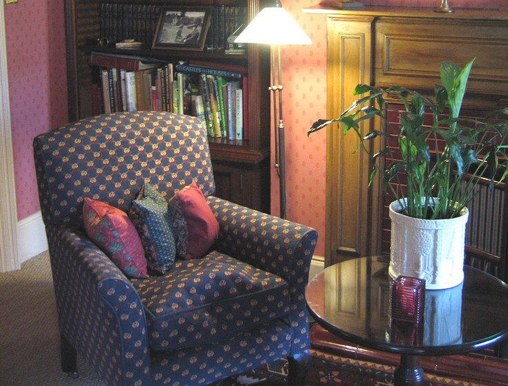 Settle down with a good book in the cosy hotel library.